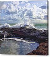 Nature's Hot Tub V2 Canvas Print