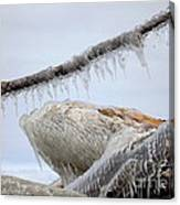 Natures Ice Sculptures 3 Canvas Print