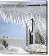 Natures Ice Sculptures1 Canvas Print