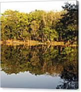 Natures Reflection Guatemala Canvas Print