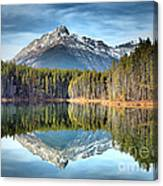Nature's Reflections Canvas Print