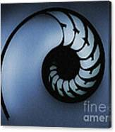Nautilus Slice Canvas Print