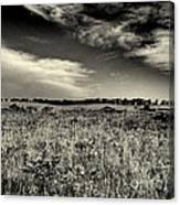 Nebraska Prairie Two In Black And White Canvas Print