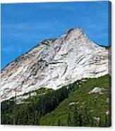 Needle Peak  Canvas Print