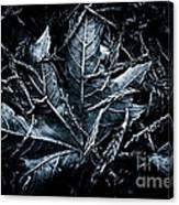 Nestled In The Pine Canvas Print