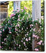Never Promised You A Rose Garden... Canvas Print