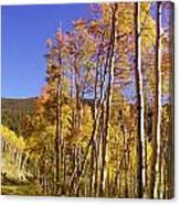 New Mexico Series - Autumn On The Mountain Canvas Print