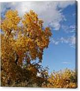 New Mexico Series - Desert Landscape Autumn Canvas Print