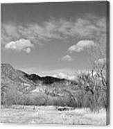 New Mexico Series - Winter Desert Beauty Black And White Canvas Print