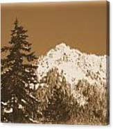 New Snow Canvas Print