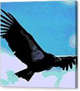 New World Vulture Canvas Print