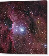Ngc 6188, Starforming Region In Ara Canvas Print