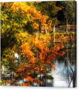 Niels' Third Pond Canvas Print