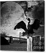 Night Of The Cormorant . Black And White Canvas Print