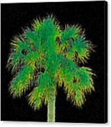 Night Of The Green Palm Canvas Print