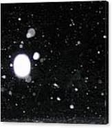 Night Snow Falling Canvas Print