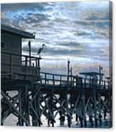 Night Stalker Canvas Print