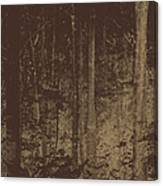 Night Woods Canvas Print