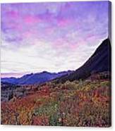 North Canol Road Near Macmillian Pass Canvas Print