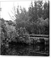 North Fork River Canvas Print