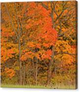 Northeast Fall Colors Canvas Print