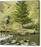 Northumberland, England A River Flowing Canvas Print