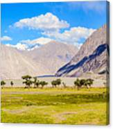 Nubra Valley Ladakh Canvas Print