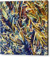 Nylon Canvas Print