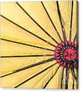 Nylon Sun Rays Canvas Print