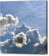 O Spacious Skies Canvas Print