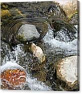 Oak Creek Canvas Print