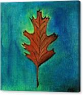 Oak Leaves  Canvas Print