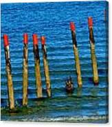 Ocean Eleven Canvas Print