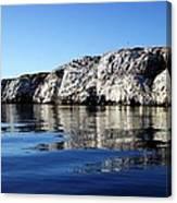 Ocean Sanctuary Canvas Print