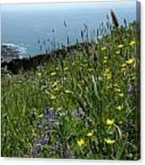 Ocean Wildflowers Canvas Print
