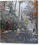 October Blizzard Canvas Print