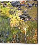 October Colors Reflected Canvas Print