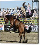 Rodeo Off In A Flash Canvas Print
