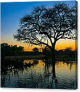 Okavango Canvas Print