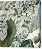 Ol Blue Eyes Canvas Print