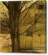 Old And Crooked Canvas Print