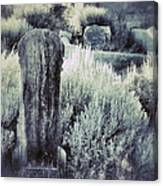 Old Cemetery On A Hill Canvas Print