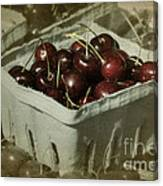 Old Fashioned Cherries Canvas Print