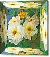 Old Fashioned Yellow Rose - Mirror Box Canvas Print