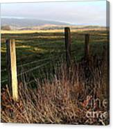 Old Fence And Landscape At Point Reyes California . 7d9968 Canvas Print