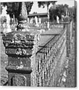 Old Graveyard Fence In Black And White Canvas Print