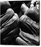 Old Hands 2 Canvas Print