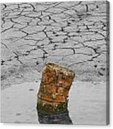 Old Rusted Barrel Abstract Canvas Print