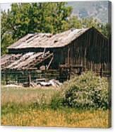 Old Saisia Barn In Spring Canvas Print