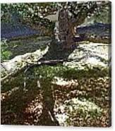 Old Tree II Canvas Print